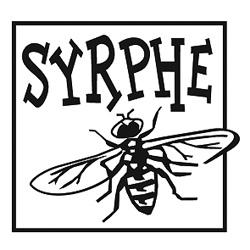 Syrphe