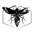 """""""Shrapnel Beats"""" is the main slogans for Hive Records a relatively young label founded in 2003 by Davyd Pittman (alias DJ: Insect) a DJ active in the Texas scene, now based in New York City. With releases in genres that […]"""
